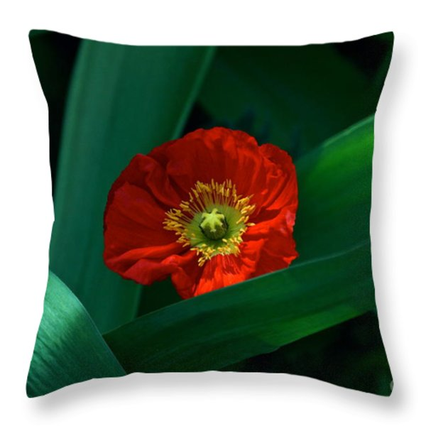Green Loves Red Loves Green Throw Pillow by Byron Varvarigos