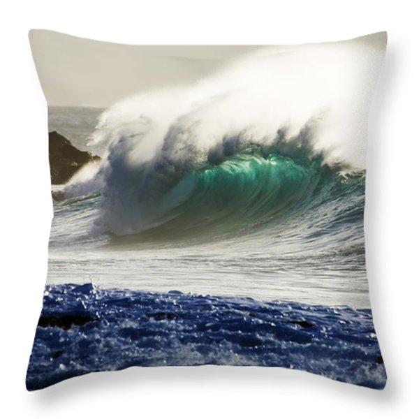 Green Reward Throw Pillow by Sean Davey