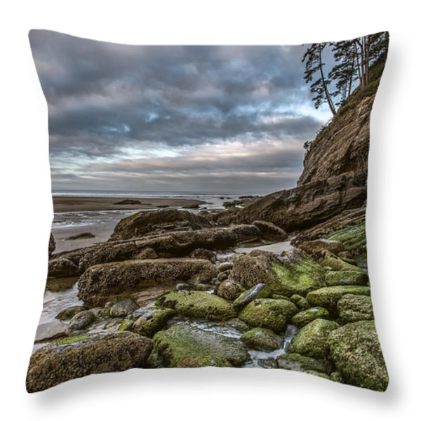 Green Stone Shore Throw Pillow by Jon Glaser