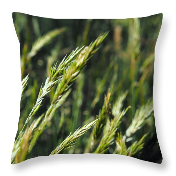 Greener Grass Throw Pillow by Justin Woodhouse