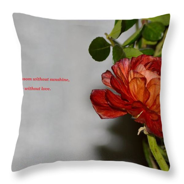 Greeting Of Love Throw Pillow by Sonali Gangane