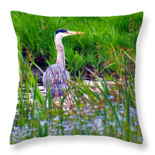 Grey Heron Throw Pillow by Trevor Kersley