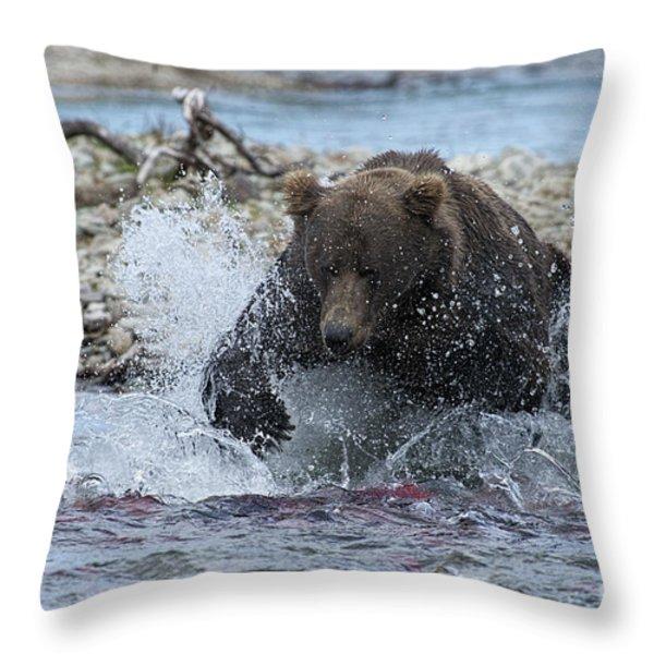 Brown Bear Pouncing On Salmon Throw Pillow by Dan Friend