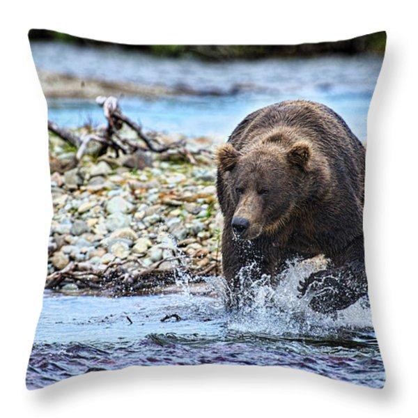 Brown Bear Spotting Salmon In Water Throw Pillow by Dan Friend