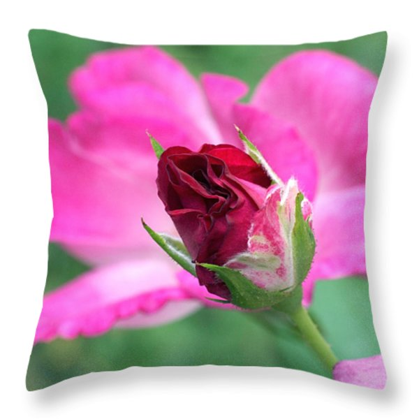 Growing Up Throw Pillow by Rona Black