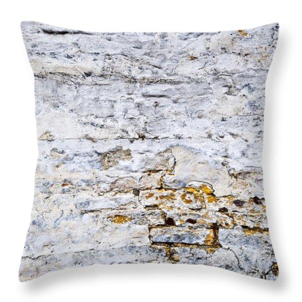 Grunge wall Throw Pillow by Elena Elisseeva