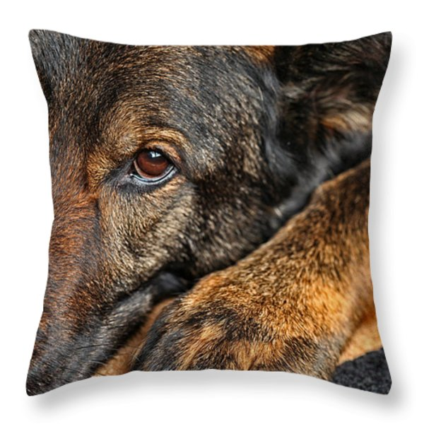 Guard Dog At Rest Throw Pillow by Karol  Livote