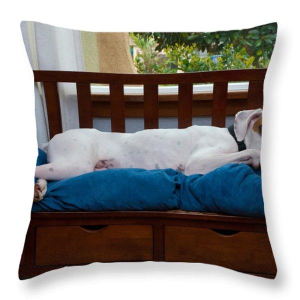 Guard Dog Throw Pillow by Dennis Reagan