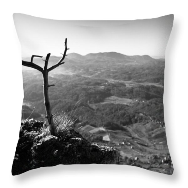 Guardian Throw Pillow by Davorin Mance
