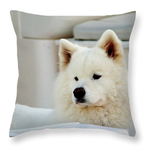 Guarding The Boat Throw Pillow by Cynthia Guinn