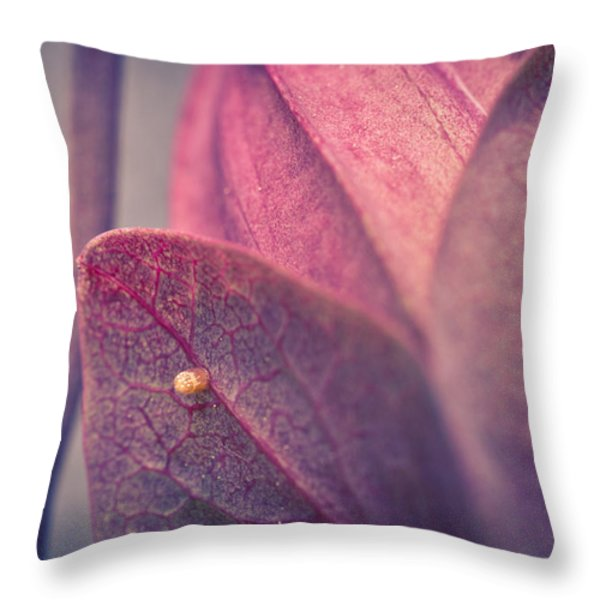 Gulf Fritillary Butterfly Egg Throw Pillow by Priya Ghose