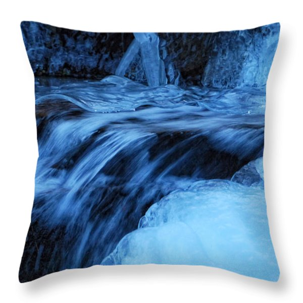 Half Frozen Throw Pillow by Donna Blackhall