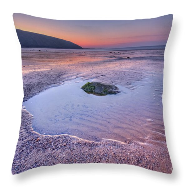 Half Past Yesterday Throw Pillow by Evelina Kremsdorf