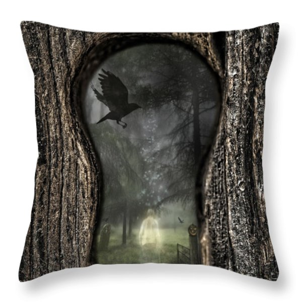 Halloween Keyhole Throw Pillow by Amanda And Christopher Elwell