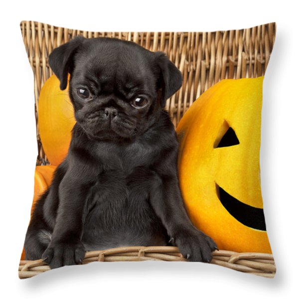 Halloween Pug Throw Pillow by Greg Cuddiford