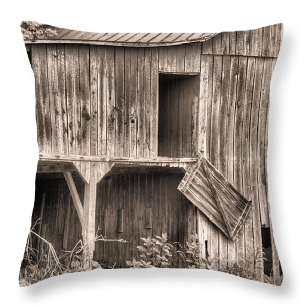 Hanging by a Moment BW Throw Pillow by JC Findley