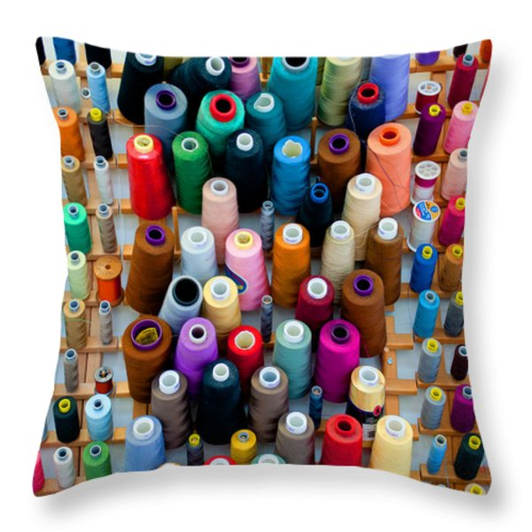 Hanging By Many Threads Throw Pillow by Paulette B Wright