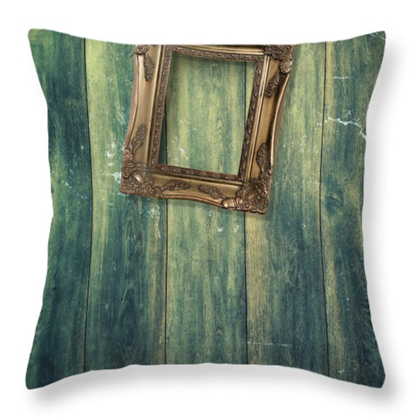 Hanging Frame Throw Pillow by Amanda And Christopher Elwell