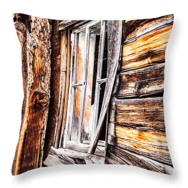 Hanging On To The Past Throw Pillow by Sue Smith