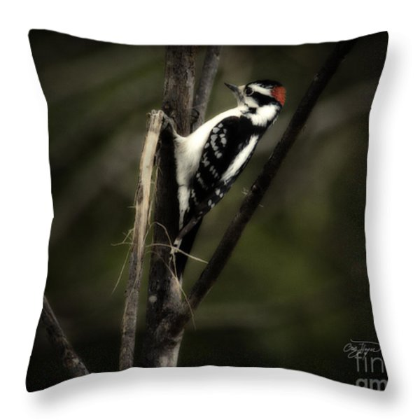 Hanging Out Throw Pillow by Cris Hayes