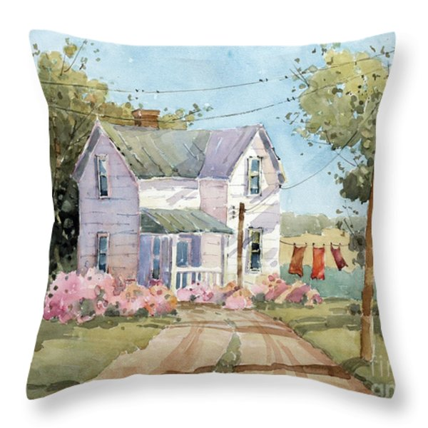 Hanging Out In Illinois By Joyce Hicks Throw Pillow by Joyce Hicks