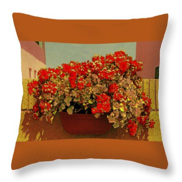 Hanging Pot With Geranium Throw Pillow by Ben and Raisa Gertsberg
