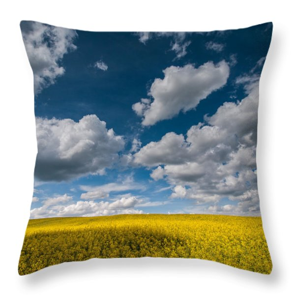 Happiness Throw Pillow by Davorin Mance