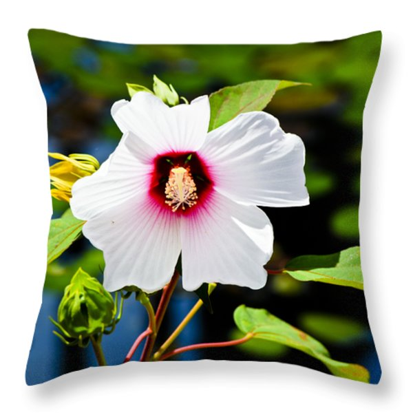 Happiness Shared is the Flower Throw Pillow by Christi Kraft