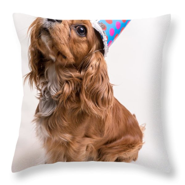 Happy Birthday Dog Throw Pillow by Edward Fielding