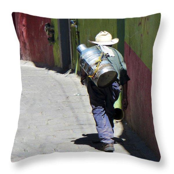 Hard Work Throw Pillow by Douglas J Fisher