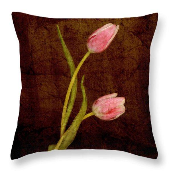 Harmony  Throw Pillow by Alana Ranney