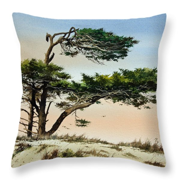Harmony Of Nature Throw Pillow by James Williamson
