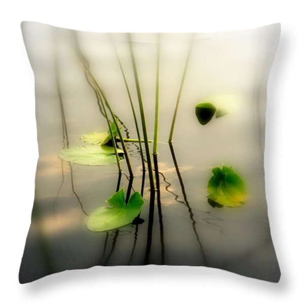 Harmony ZEN Photography II Throw Pillow by Susanne Van Hulst