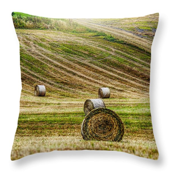 Harvest Day Throw Pillow by Erik Brede