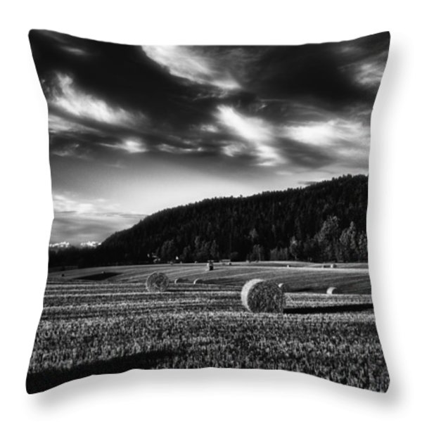 Harvest Throw Pillow by Erik Brede