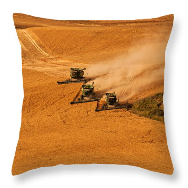 Harvest Throw Pillow by Mary Jo Allen