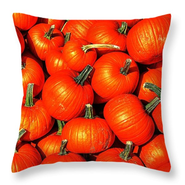 Harvest Party Throw Pillow by Benjamin Yeager
