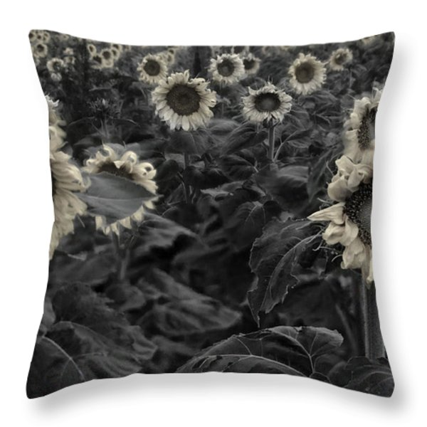 Haunting Sunflowers Field 3 Throw Pillow by Dave Dilli