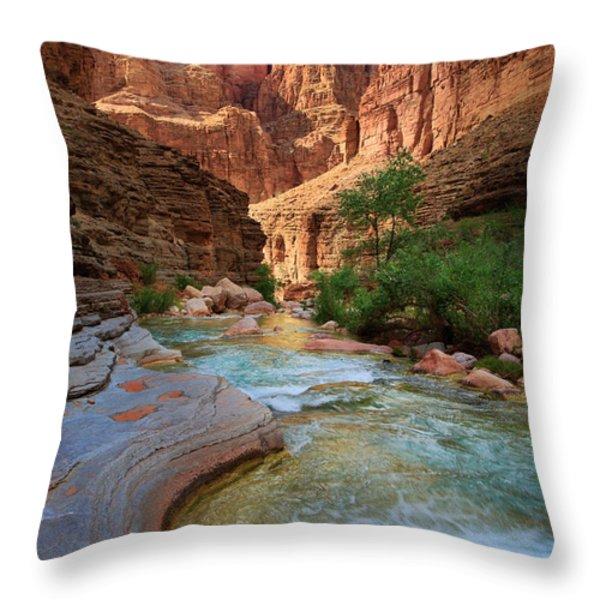 Havasu Creek Throw Pillow by Inge Johnsson