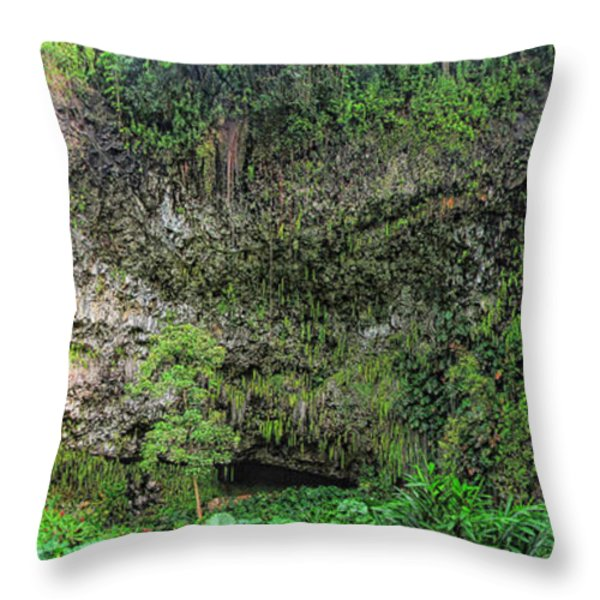 Hawaii Fern Grotto Throw Pillow by C H Apperson