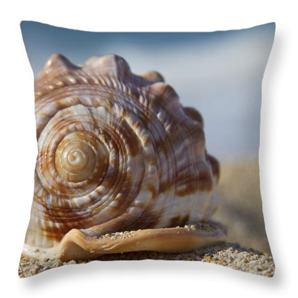 Hawaii Gentle Breeze Throw Pillow by Sharon Mau