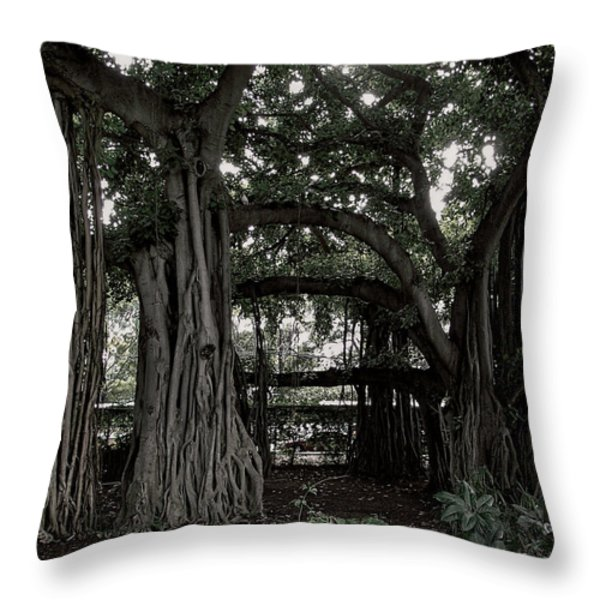 Hawaiian Banyan Trees Throw Pillow by Daniel Hagerman