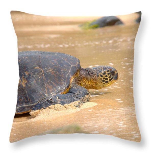 Hawaiian Green Sea Turtle 2 Throw Pillow by Brian Harig