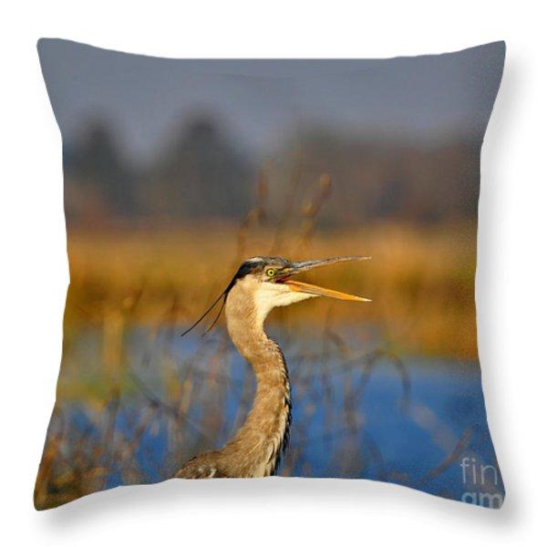 Hawking Heron Throw Pillow by Al Powell Photography USA