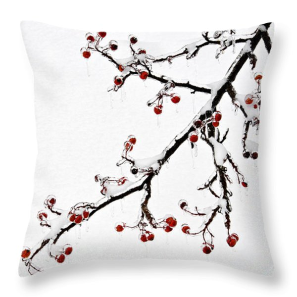 Hawthorn Ice And Snow - D004830 Throw Pillow by Daniel Dempster