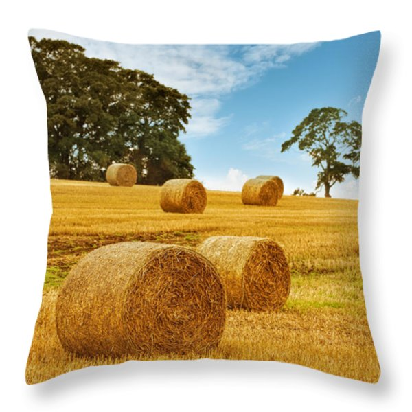 Hay Bales Throw Pillow by Amanda And Christopher Elwell