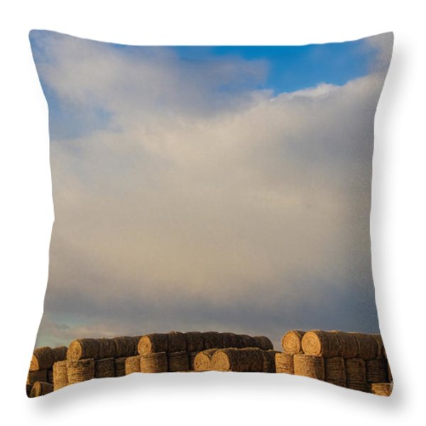 Hay Bales Throw Pillow by James BO  Insogna