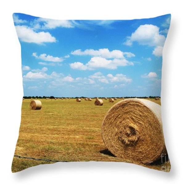 Hayfield Throw Pillow by Venus