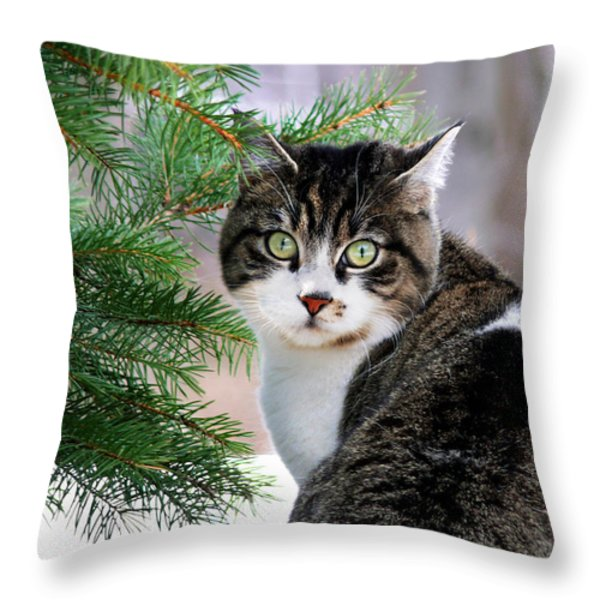 Hazel Eyes And Pine Throw Pillow by Christina Rollo
