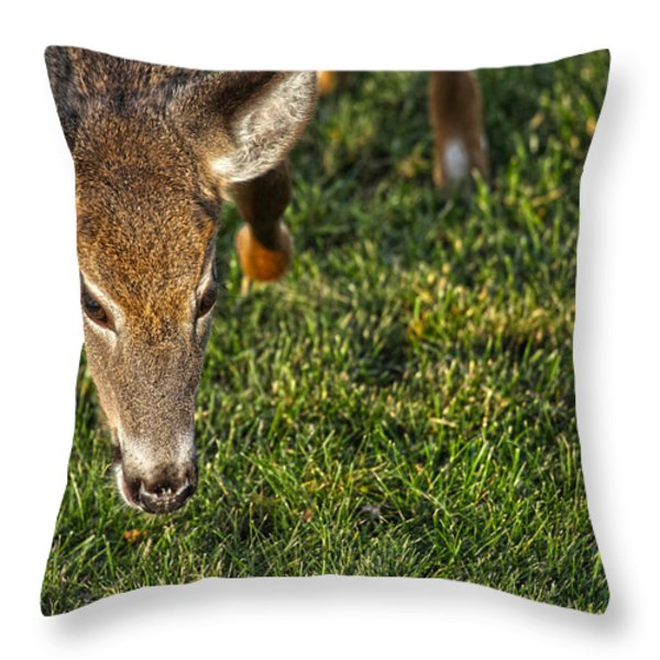 Head First Throw Pillow by Karol  Livote